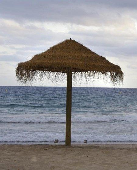 información ayudas subvenciones punt nautic